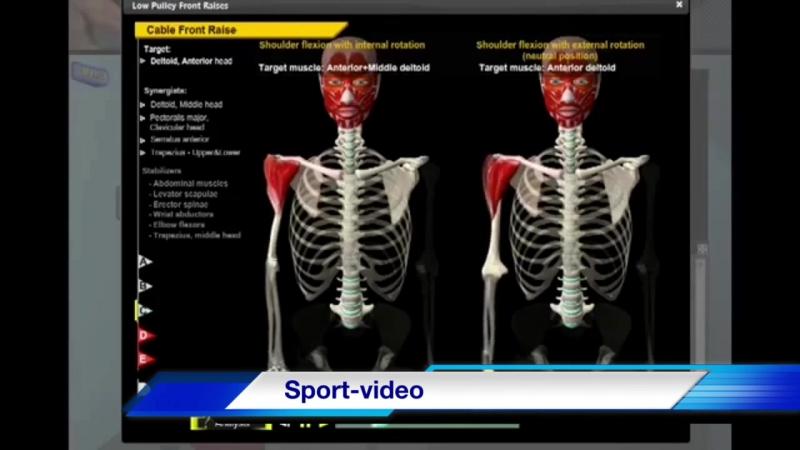 Биомеханика Дельтовидных Мышц. Анатомия и 3D анализ Упражнений.
