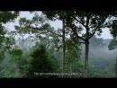 BBC В краю муссонов 4 Экстравагантные изгои Познавательный природа путешествие 2014