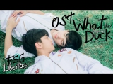 [OST What the duck the series] คอหมดหวใจ - บอย สมภพ [рус.саб]