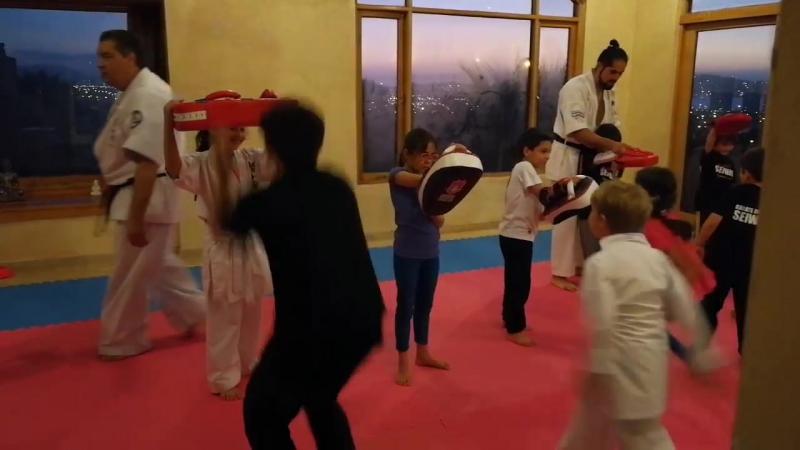 Занятие с основателем направления SEIWAKAI в карате Kancho Ademir da Costa