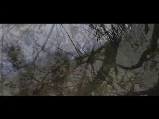Selvans - Lupercale (A Jonny tribute)