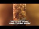 Пуйоль получил по лицу резиновым пенисом от незнакомки в Москве