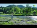 Пока Цветёт Папоротник (9 Серия) HD