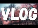 VLOG|LOCKWOOD. Возвращение Локвуд Фэмили. Бизнесмен Александр. Даниил отдал инст Закату 99.1