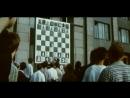 Гроссмейстер. Х/ф. СССР. 1972 год