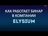 КАК ЗАЙТИ В КОМПАНИЮ #Elysium  /#ЭЛИЗИУМ  С МАКСИМАЛЬНОЙ ВЫГОДОЙ