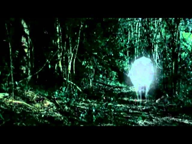 Тропическая Болезнь / Tropical Malady - Apichatpong Weerasethakul (Трейлер)