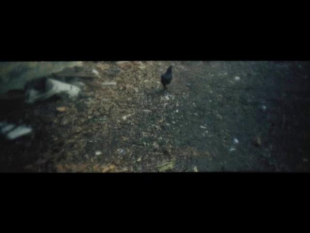 Ashes - Fragmento (Apichatpong Weerasethakul, 2012)