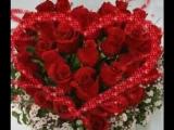 МЕГА КРАСИВАЯ песня Алая роза СЛУШАТЬ даже тем у кого 100% слуха не было и нет