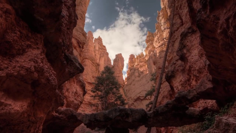 Grand Canyon, Bryce Canyon, Zion Canyon