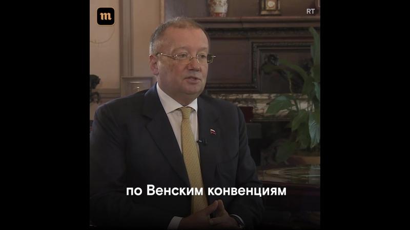 """Может, они здоровы?"""" Посол РФ об отравлении Скрипалей"""