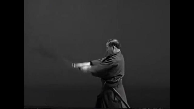 Iaido Kata Seitei 08 Hachihon-me - Ganmen-ate - High quality - www.thesamuraiwor