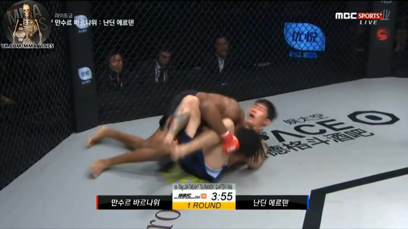 Munguntsooj Nandin-Erdene vs. Mansour Barnaoui