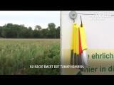 Цветочные поля в Германии