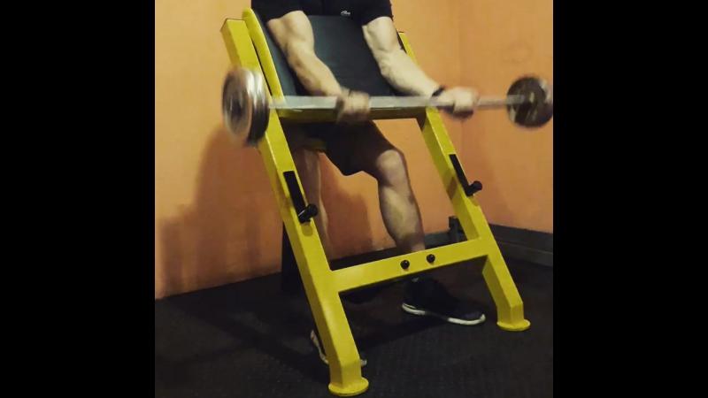 Gold's Gym (Волочиськ) Тренажер Лавка скотта