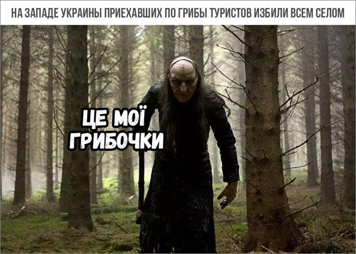 https://pp.userapi.com/c841527/v841527227/2772f/CmYfEJvkcTU.jpg