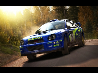 Dirt Rally 12.24.2017 Logitech MOMO RACING