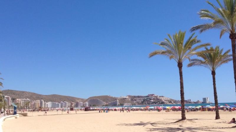 Испания 🇪🇸