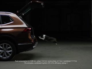 Volkswagen Tiguan удивляет