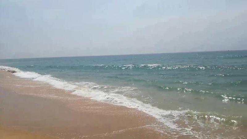 Керала дикий пляж