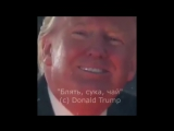 цитаты великих - блять, сука, чай (VHS Video)