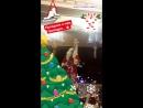 Новогодний праздник🎄 Танец Деда Мороза🎅