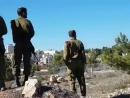 день гнева в Рамалле