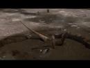 BBC Планета динозавров 5 Новые гиганты Познавательный история палеонтология 2011