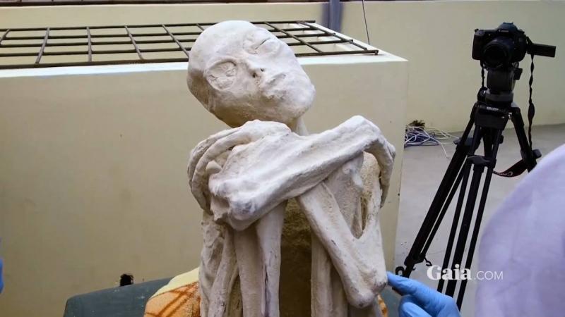 Тайна трехпалых мумий Просто Мария