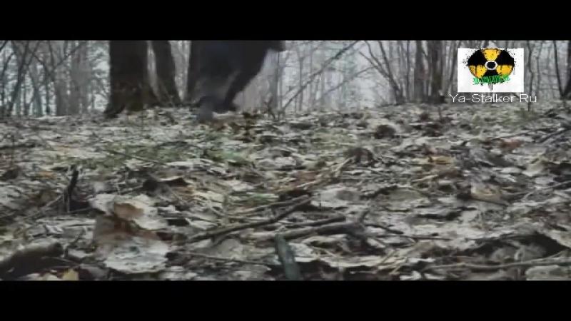 Асфальт - Беглец
