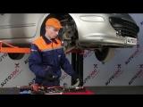 Peugeot 307 (Пежо 307) замена передних тормозных колодок и дисков