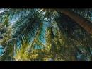 Maldives. Tropical Paradise  Мальдивы. Тропический рай