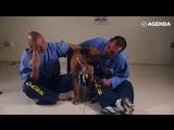 Тюрьмы для заключенных и собак