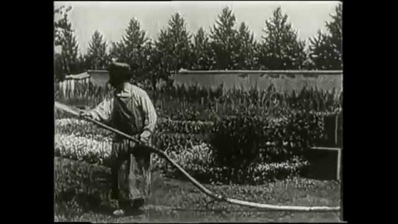 «Политый поливальщик»(1895) - Первая кинокомедия