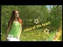 Прогулка со мной голос сердца или голос разума