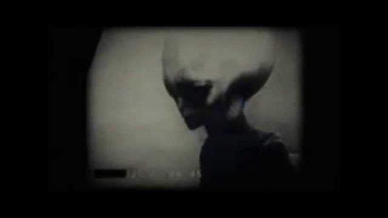 Инопланетянин Тощий Боб (Skinny Bob)