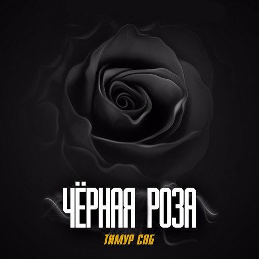 Тимур Спб альбом Чёрная роза