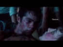 Thomas x chuck x newt x teresa agnes | the maze runner: the death cure [ vine ]