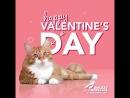 Всех с Днём Св.Валентина! Любви Вам