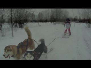 Ездовой спорт для детей в Братеево
