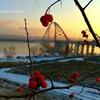 Бугринская роща, парк отдыха Новосибирск
