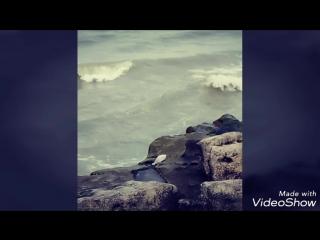 Жизнь ...как море..мы также бьемся о скалы надежды