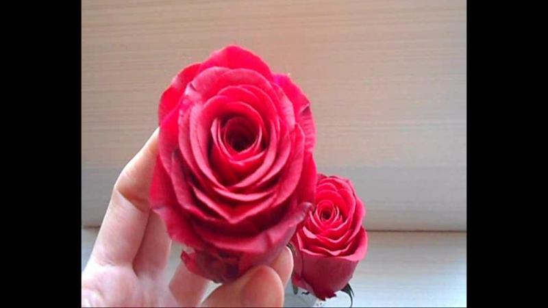 Красные розы из холодного фарфора red redroses bouquet crazy boho style decor wedding clayflower polymer bridalbouque