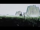 cat soup - decamp (video)