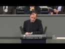 Gottfried Curio (AfD) - Wir müssen die Grenzen schützen - Die Bundesregierung und Angela Merkel gehörten auf die Anklagebank