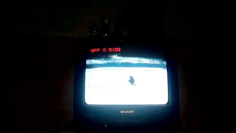 Реклама вид с моста через реку Тихая сосна заставка конец эфира TV Губерния Острогожск 24.01.2018