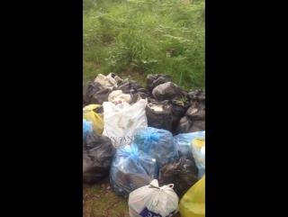 Отчет от 25 июня 2017 года   Квест: Уборка в лесу, мкр Березовый