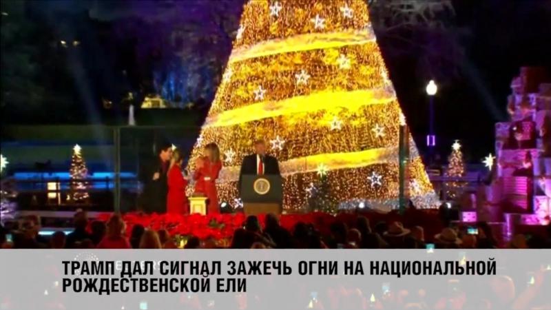 Дональд и Меланья Трамп впервые зажгли огни на рождественской елке у Белого дома