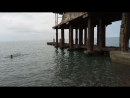 Абхазия черное море. Мой дрищавый друг