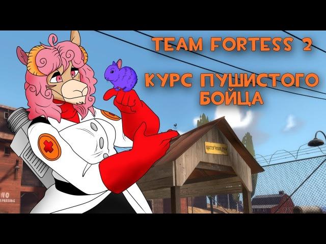 Team Fortess 2: Курс пушистого бойца
